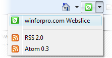 winforpro.com Webslice